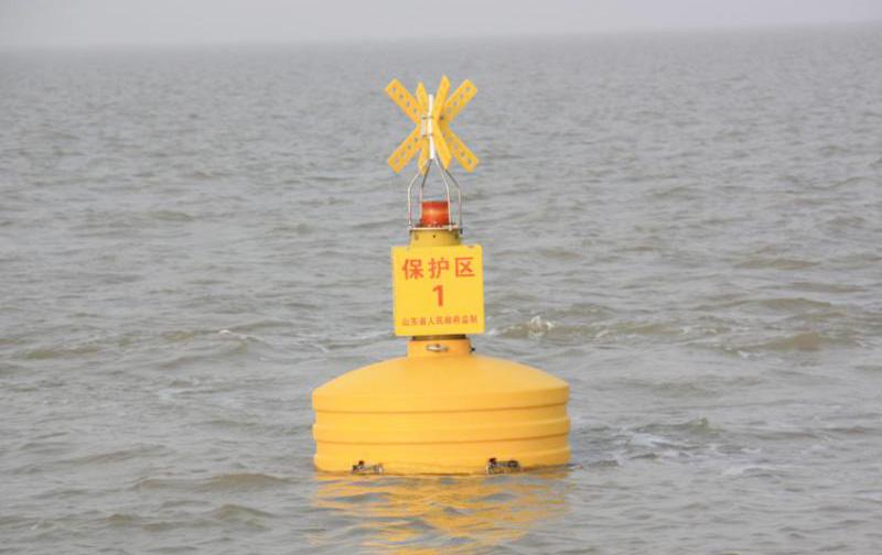 PE Rotational Molding Buoy